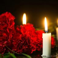 Flowers-7_Red_Carnations_with_Candles_gKQaTEb.jpg