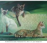 Их Величество кошки, Матюшонок О.А., 2013, х. м., рук. Кожаро В.А..jpg