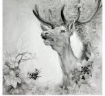 Зов весны, из серии Красная книга, Януш А.П., 2010, карандаш, рук. Кожаро В.А..JPG